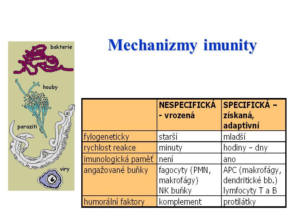 Mechanizmy imunity