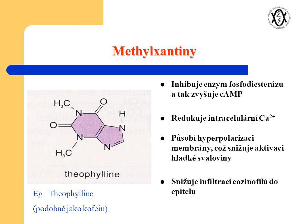 Methylxantiny Inhibuje enzym fosfodiesterázu a tak zvyšuje cAMP