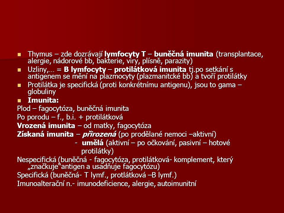 Thymus – zde dozrávají lymfocyty T – buněčná imunita (transplantace, alergie, nádorové bb, bakterie, viry, plísně, parazity)