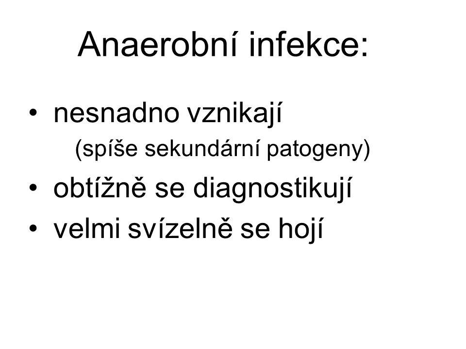 Anaerobní infekce: nesnadno vznikají. (spíše sekundární patogeny) obtížně se diagnostikují.