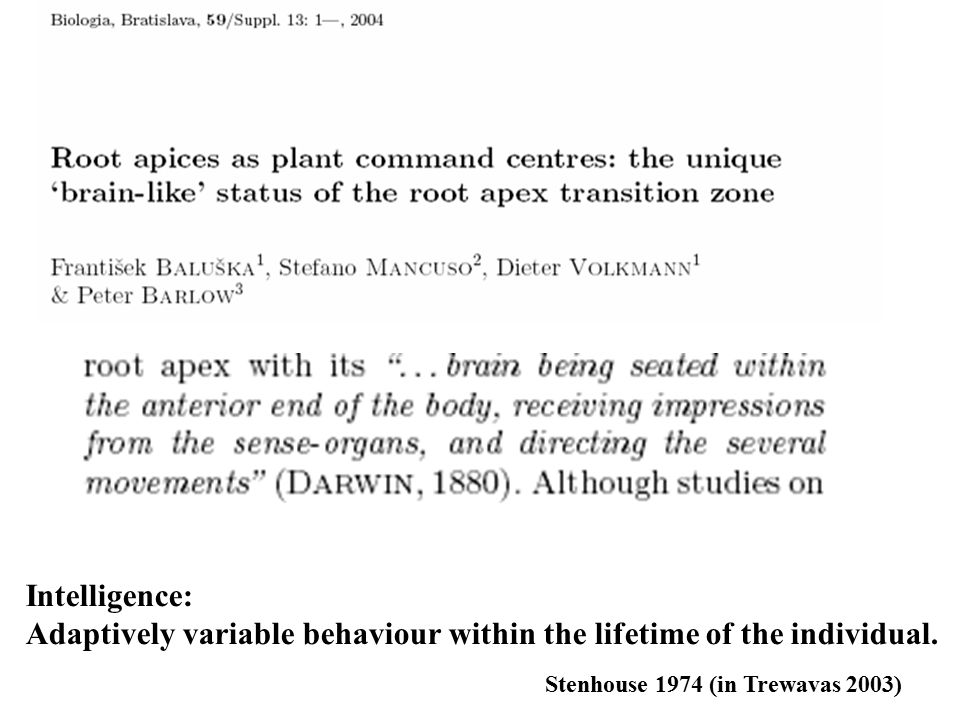Adaptively variable behaviour within the lifetime of the individual.