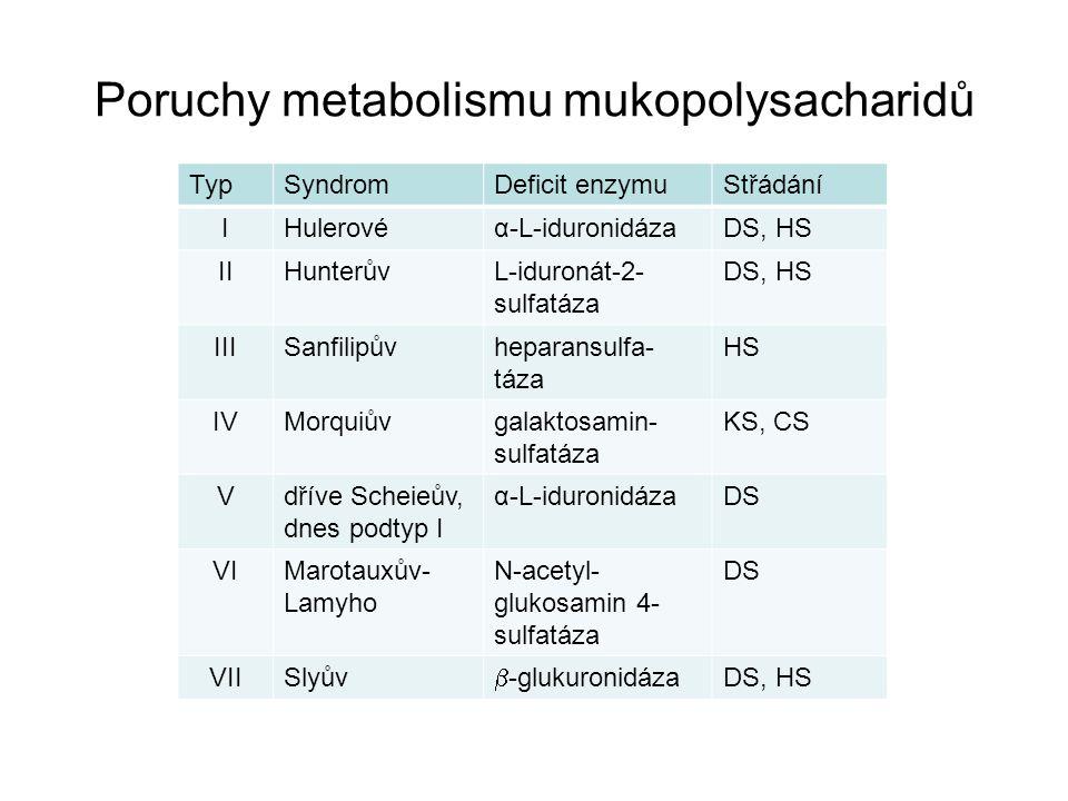 Poruchy metabolismu mukopolysacharidů