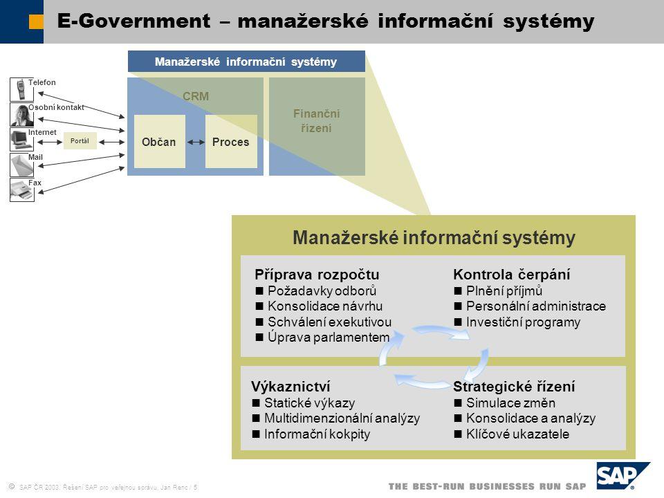 E-Government – manažerské informační systémy