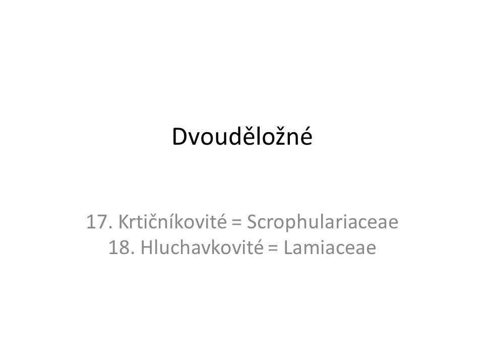 17. Krtičníkovité = Scrophulariaceae 18. Hluchavkovité = Lamiaceae