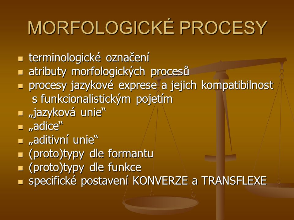 MORFOLOGICKÉ PROCESY terminologické označení