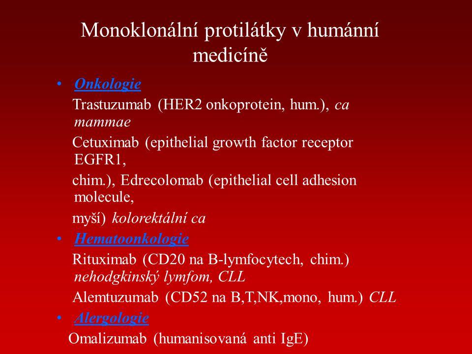 Monoklonální protilátky v humánní medicíně