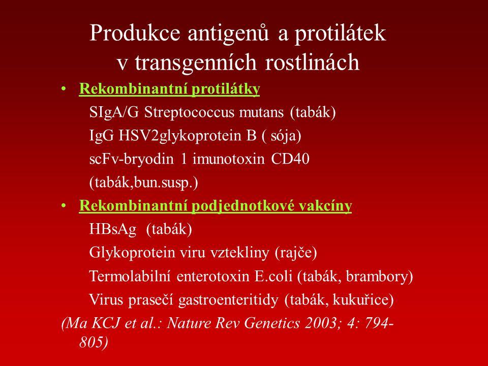 Produkce antigenů a protilátek v transgenních rostlinách