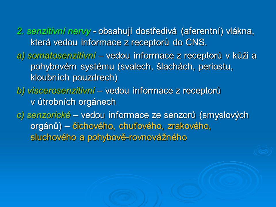 2. senzitivní nervy - obsahují dostředivá (aferentní) vlákna, která vedou informace z receptorů do CNS.