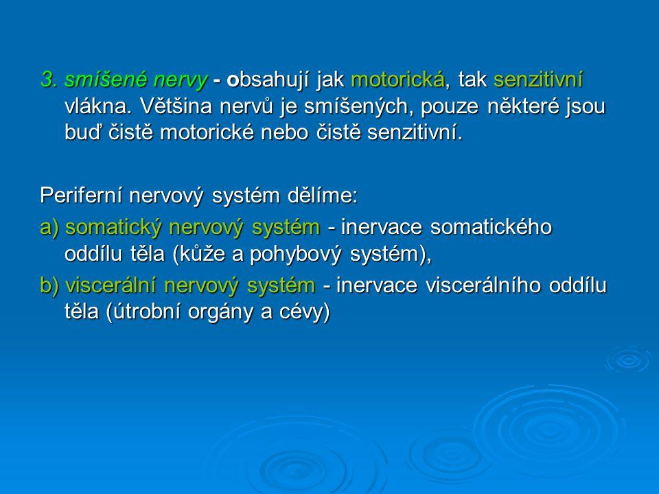 3. smíšené nervy - obsahují jak motorická, tak senzitivní vlákna