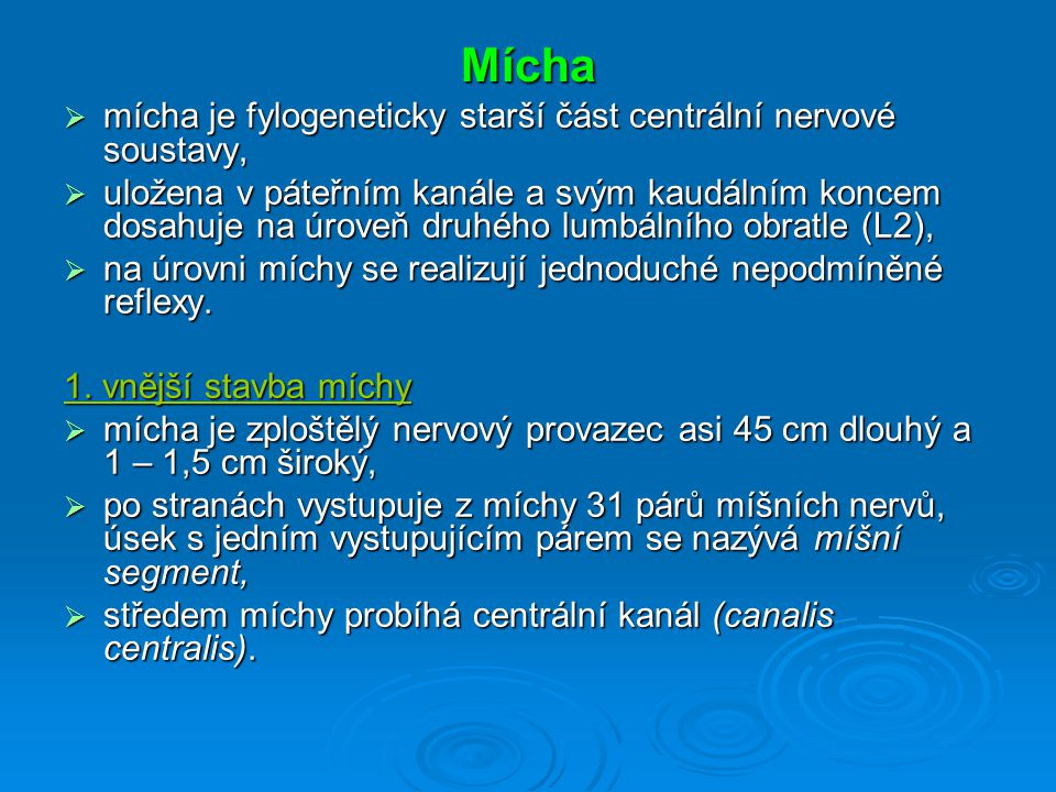 Mícha mícha je fylogeneticky starší část centrální nervové soustavy,