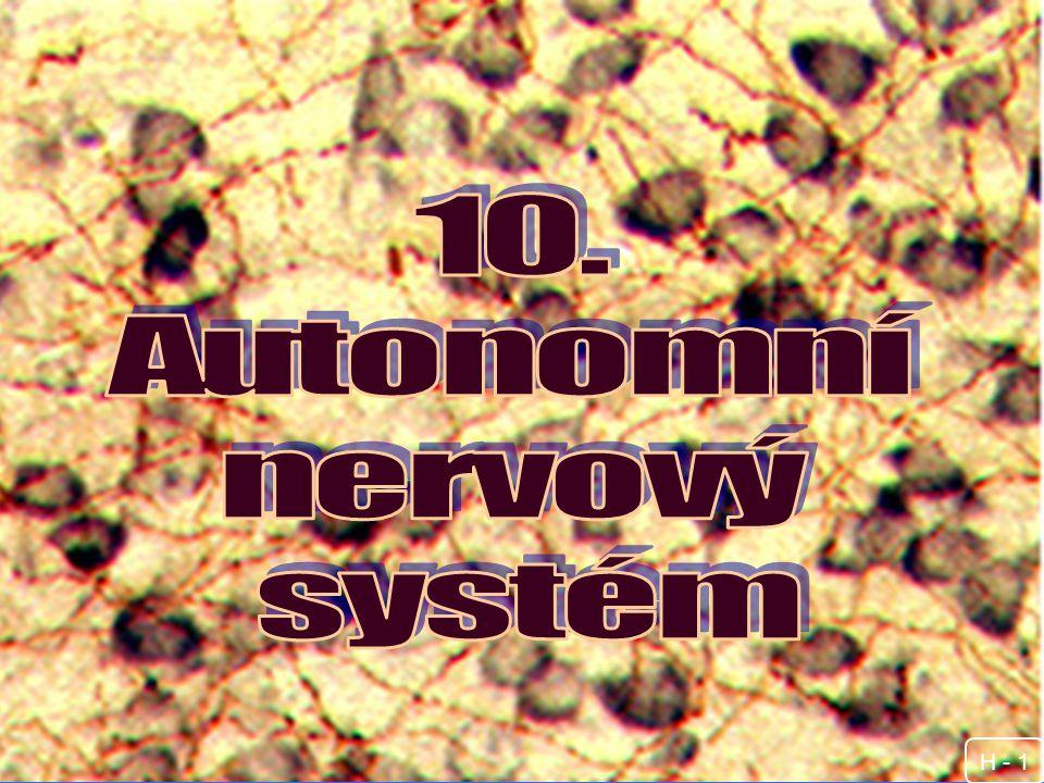 10. Autonomní nervový systém H - 1