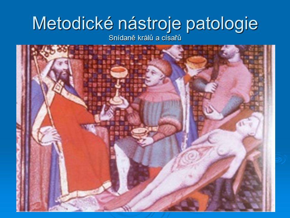 Metodické nástroje patologie Snídaně králů a císařů