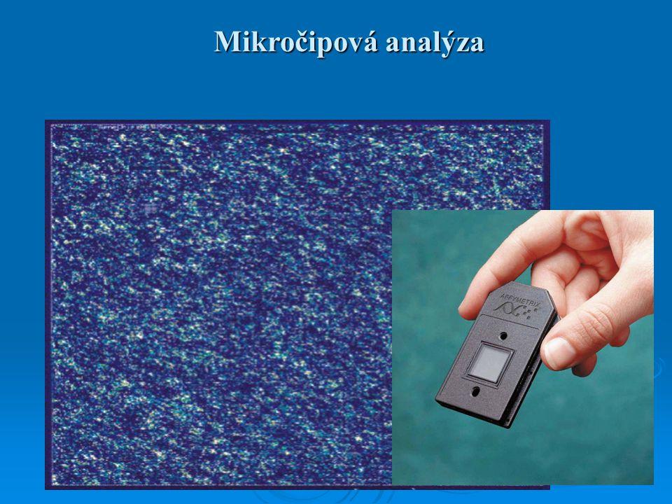 Mikročipová analýza