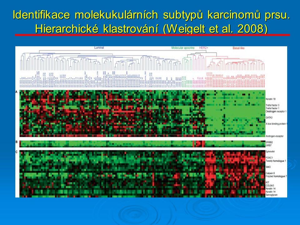 Identifikace molekukulárních subtypů karcinomů prsu