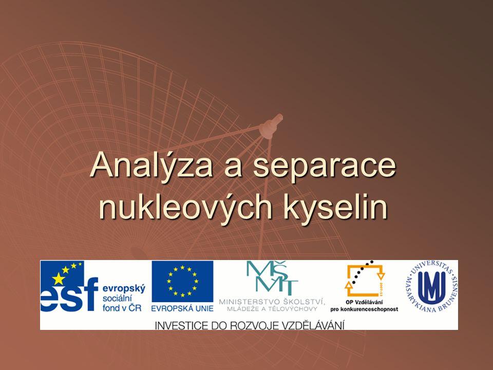 Analýza a separace nukleových kyselin