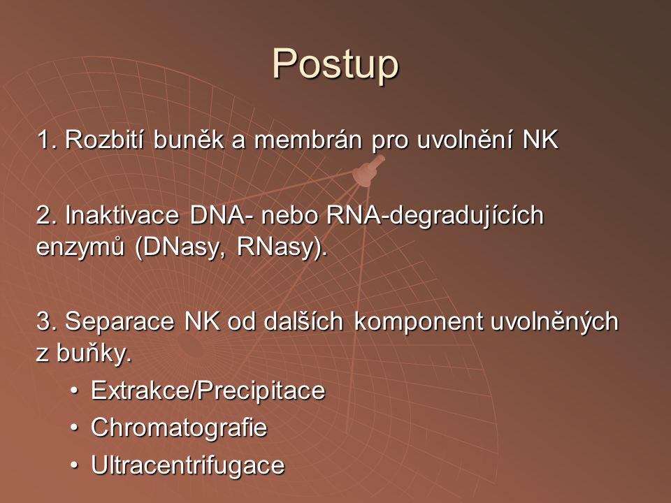 Postup 1. Rozbití buněk a membrán pro uvolnění NK