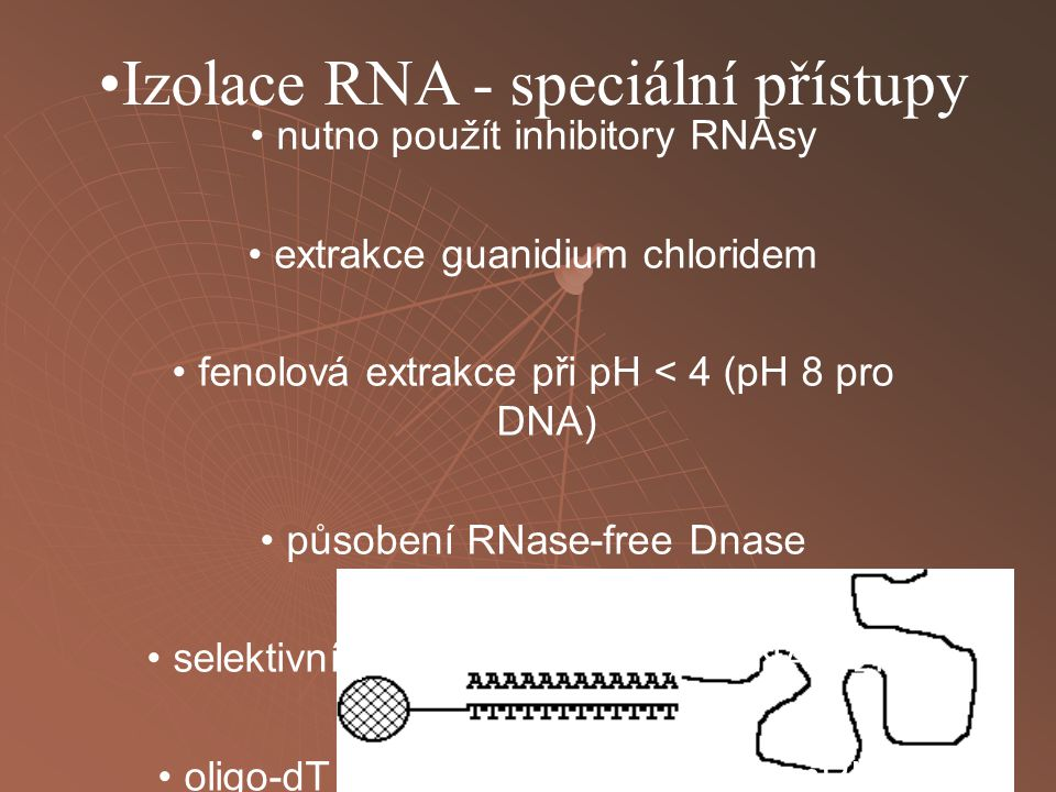 Izolace RNA - speciální přístupy