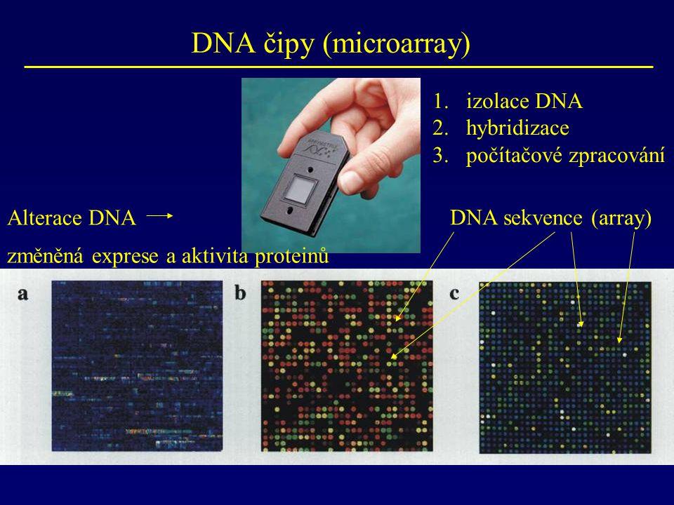 DNA čipy (microarray) izolace DNA hybridizace počítačové zpracování