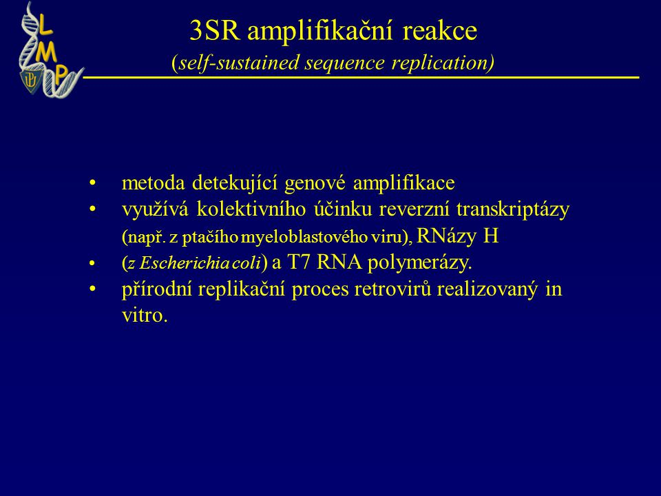 3SR amplifikační reakce (self-sustained sequence replication)
