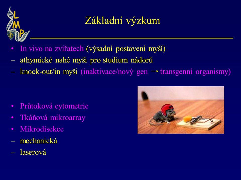 Základní výzkum In vivo na zvířatech (výsadní postavení myší)