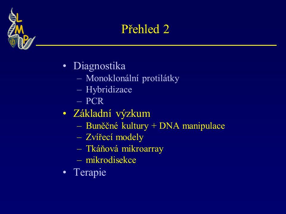 Přehled 2 Diagnostika Základní výzkum Terapie Monoklonální protilátky