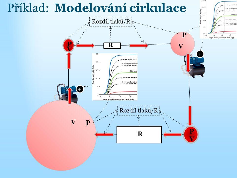 Příklad: Modelování cirkulace
