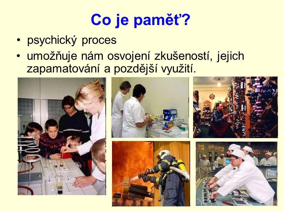 Co je paměť psychický proces