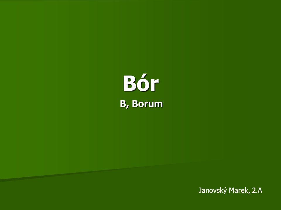 Bór B, Borum Janovský Marek, 2.A
