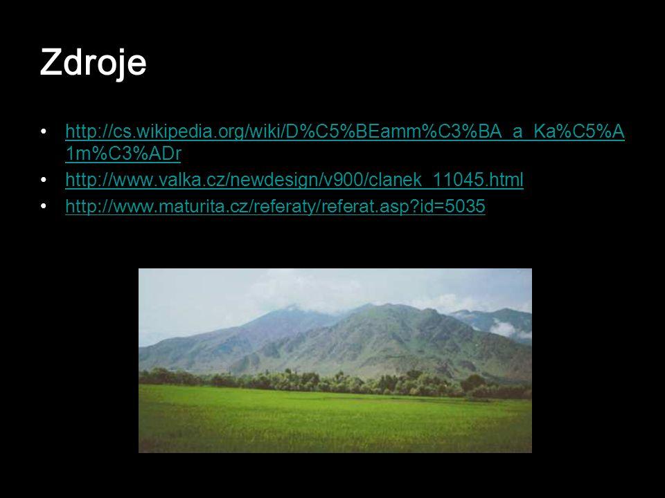 Zdroje http://cs.wikipedia.org/wiki/D%C5%BEamm%C3%BA_a_Ka%C5%A1m%C3%ADr. http://www.valka.cz/newdesign/v900/clanek_11045.html.