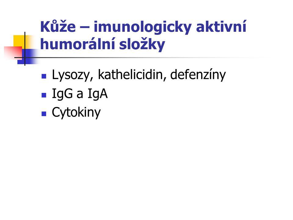 Kůže – imunologicky aktivní humorální složky