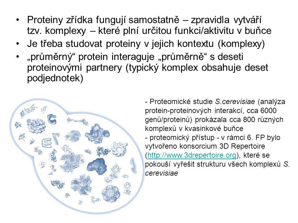 Je třeba studovat proteiny v jejich kontextu (komplexy)