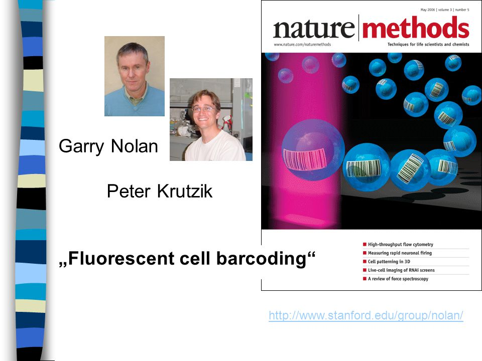 """Fluorescent cell barcoding"