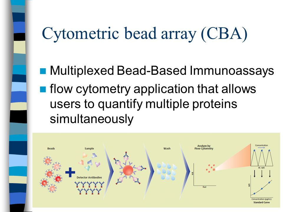 Cytometric bead array (CBA)