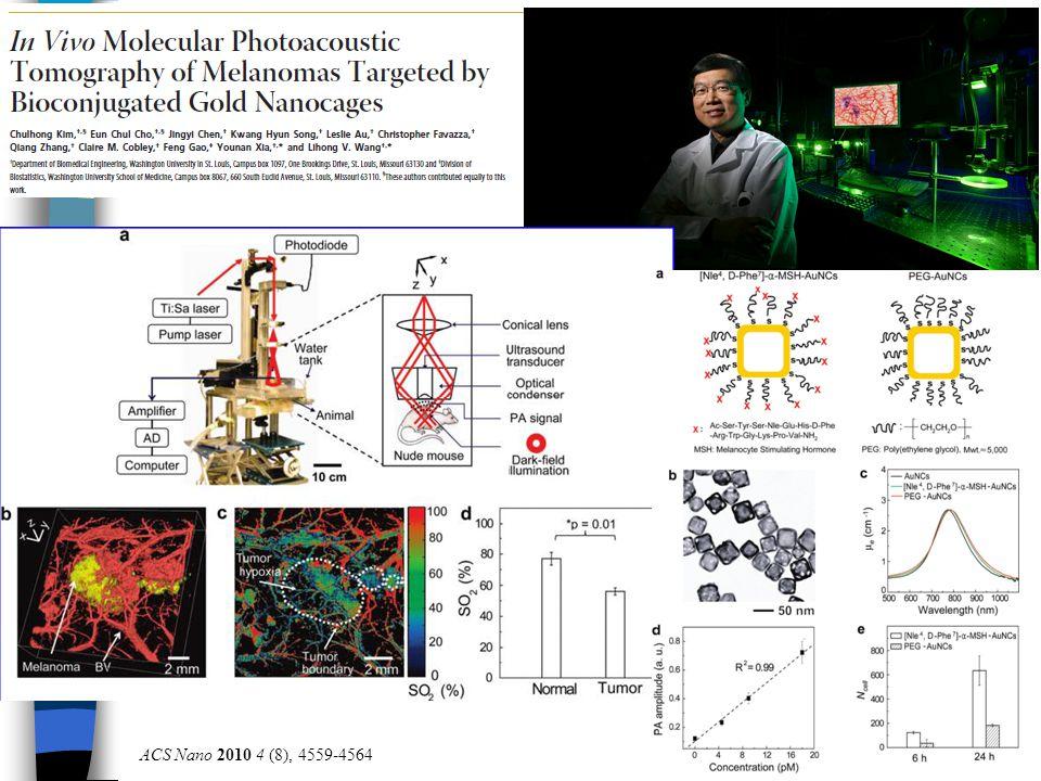 ACS Nano 2010 4 (8), 4559-4564
