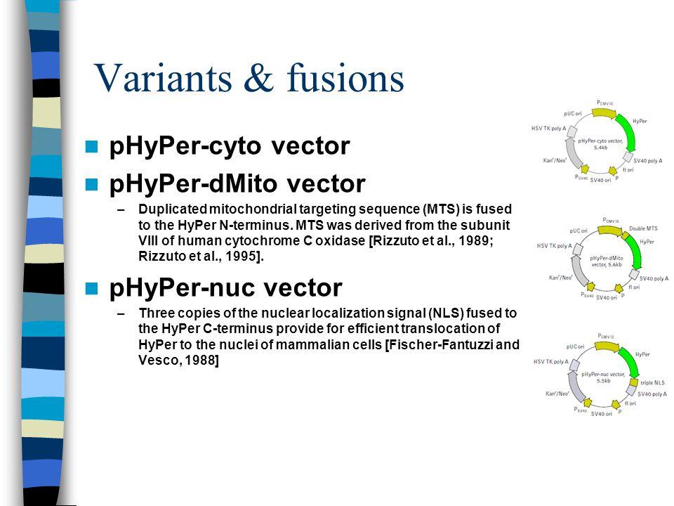 Variants & fusions pHyPer-cyto vector pHyPer-dMito vector