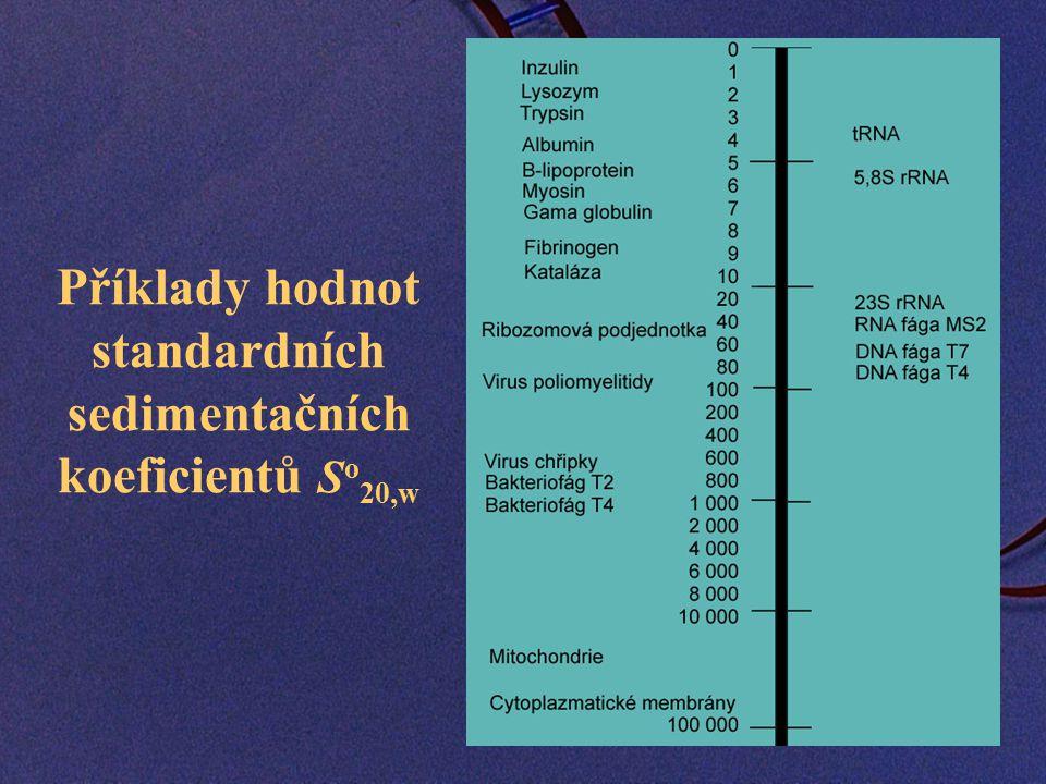 Příklady hodnot standardních sedimentačních koeficientů So20,w