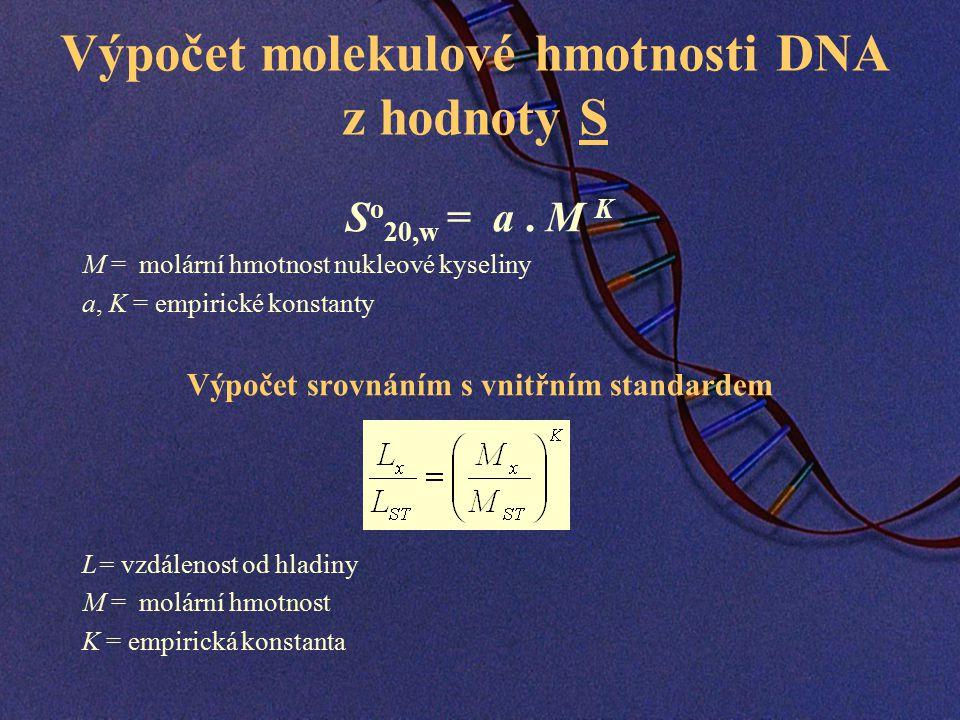 Výpočet molekulové hmotnosti DNA z hodnoty S