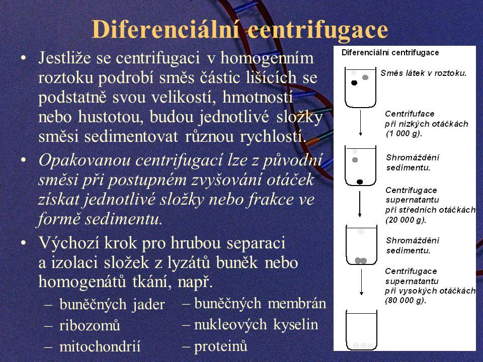 Diferenciální centrifugace