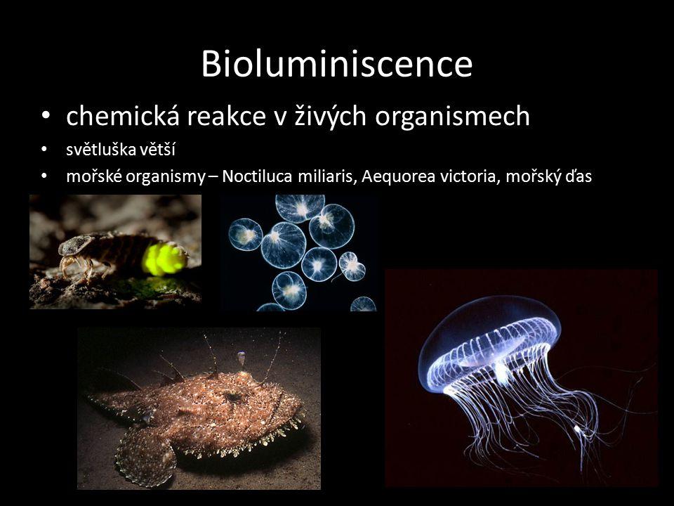 Bioluminiscence chemická reakce v živých organismech světluška větší