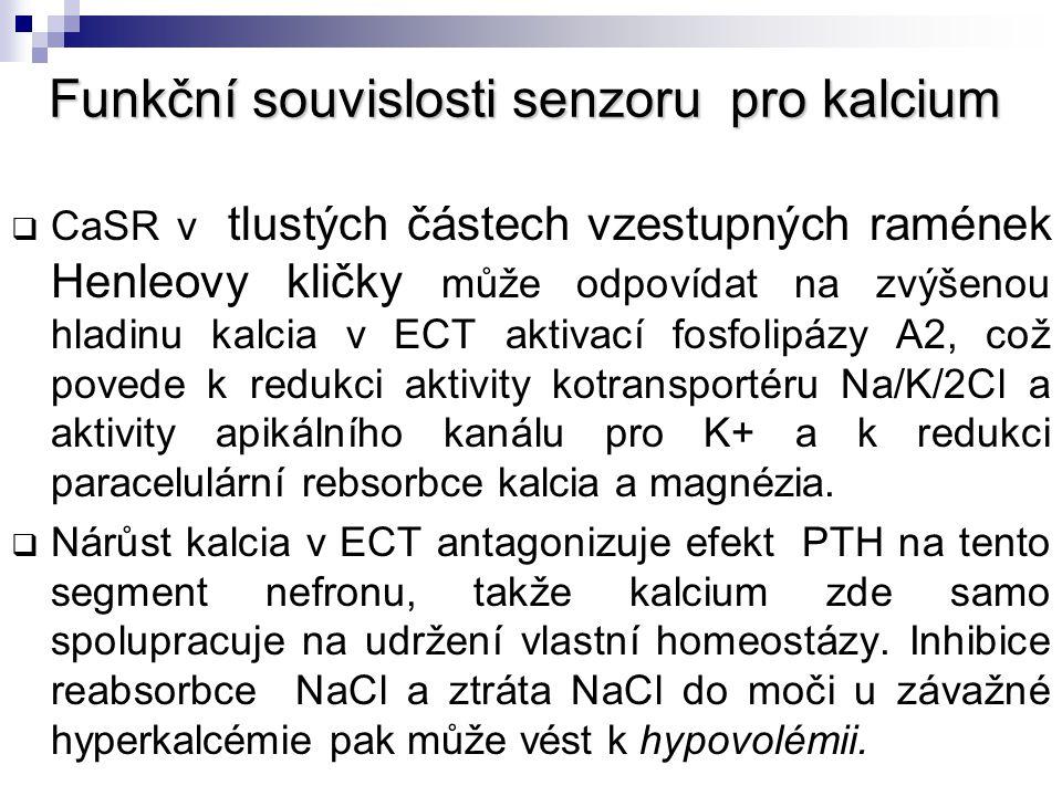 Funkční souvislosti senzoru pro kalcium