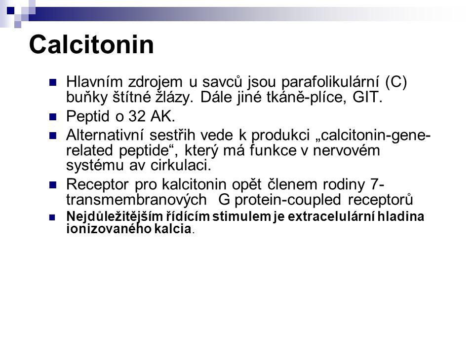 Calcitonin Hlavním zdrojem u savců jsou parafolikulární (C) buňky štítné žlázy. Dále jiné tkáně-plíce, GIT.