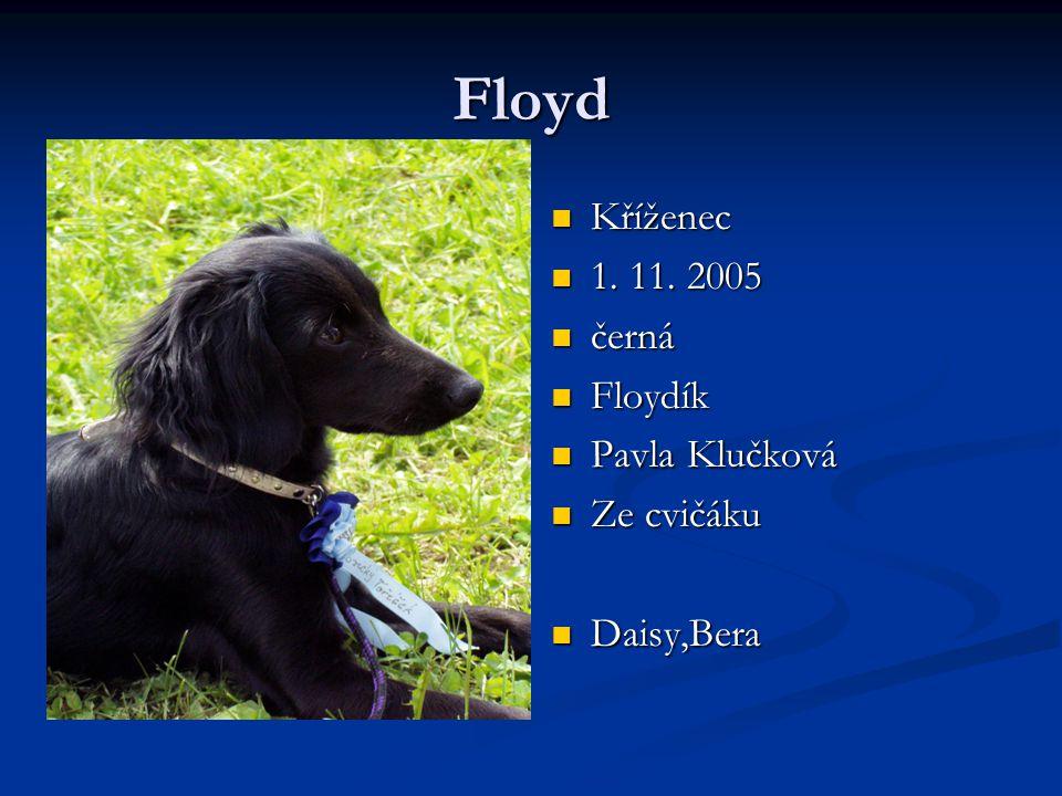Floyd Kříženec 1. 11. 2005 černá Floydík Pavla Klučková Ze cvičáku