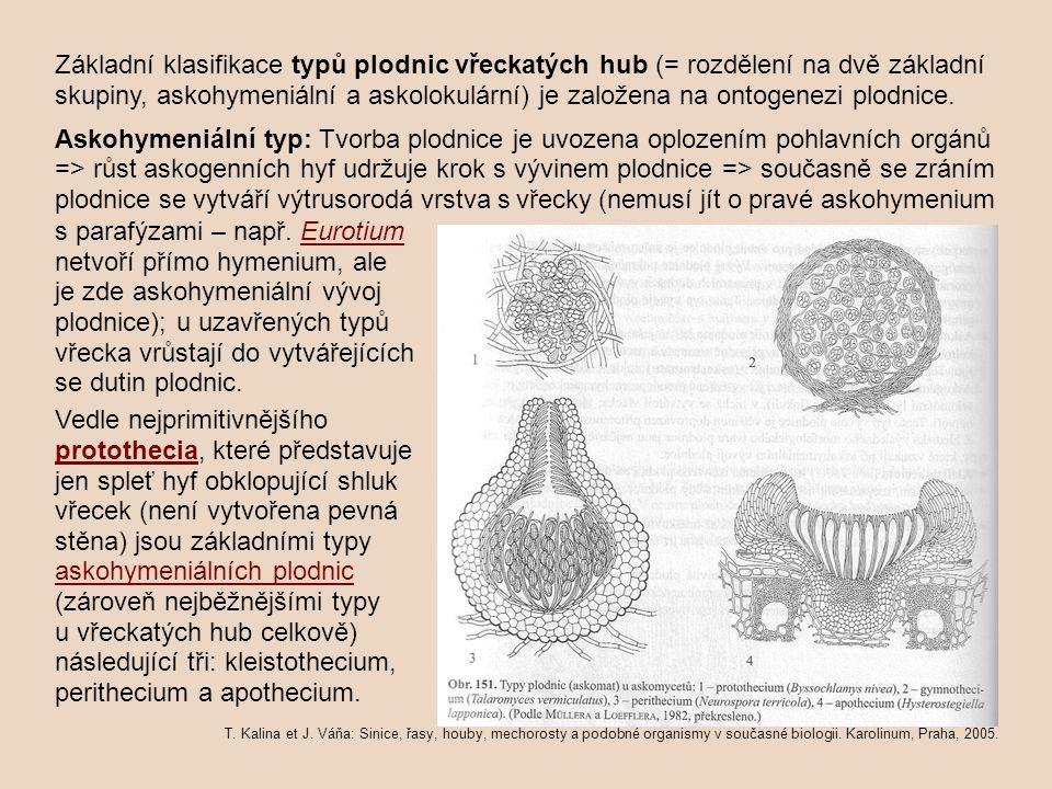 Základní klasifikace typů plodnic vřeckatých hub (= rozdělení na dvě základní skupiny, askohymeniální a askolokulární) je založena na ontogenezi plodnice.