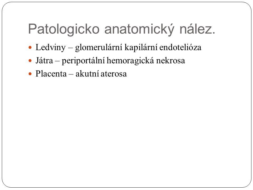 Patologicko anatomický nález.