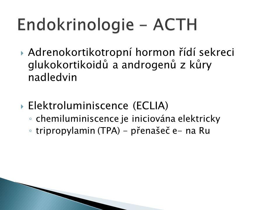 Endokrinologie - ACTH Adrenokortikotropní hormon řídí sekreci glukokortikoidů a androgenů z kůry nadledvin.