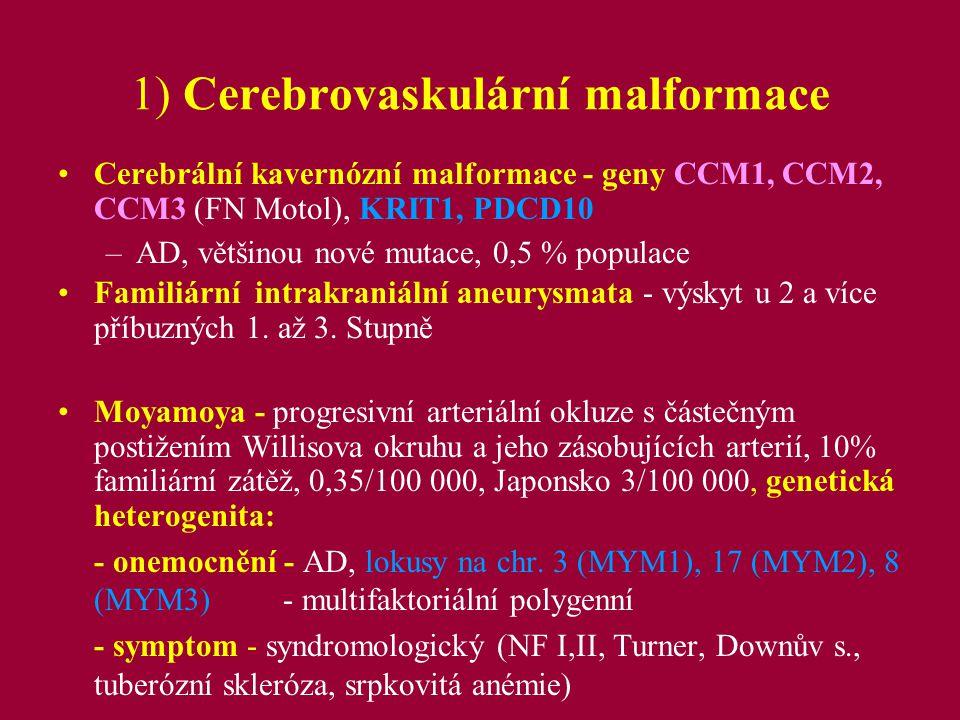 1) Cerebrovaskulární malformace