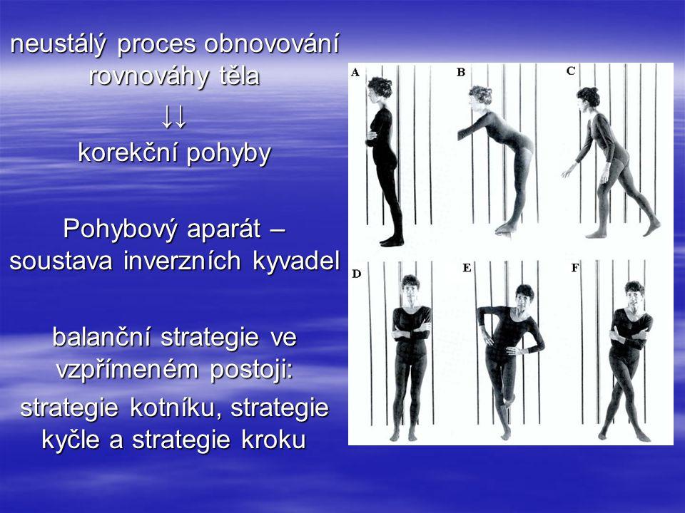 neustálý proces obnovování rovnováhy těla ↓↓ korekční pohyby Pohybový aparát – soustava inverzních kyvadel balanční strategie ve vzpřímeném postoji: strategie kotníku, strategie kyčle a strategie kroku