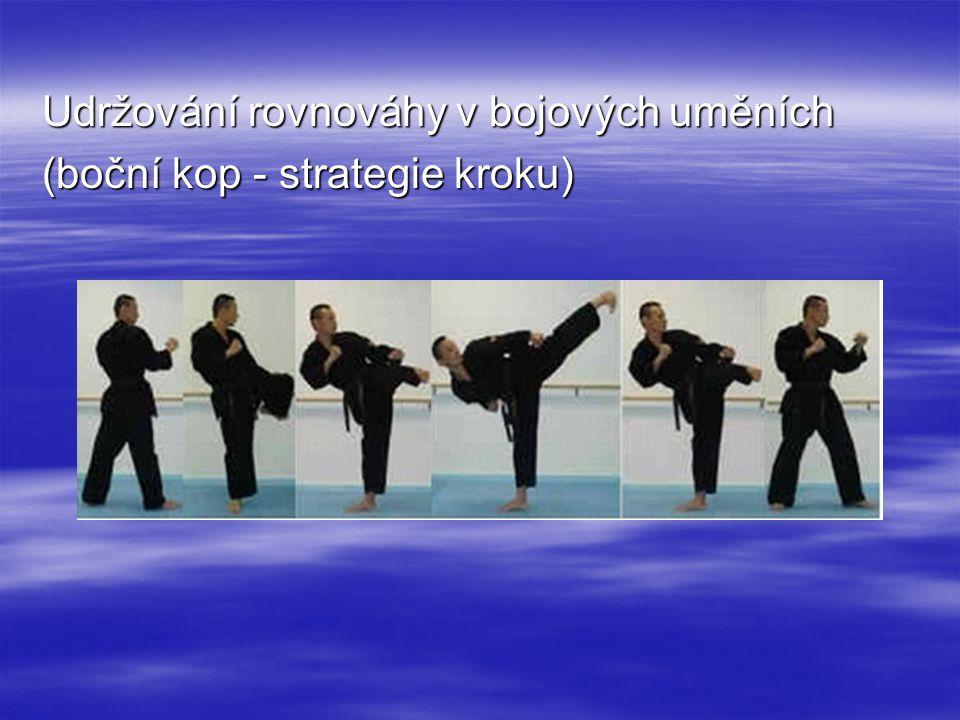 Udržování rovnováhy v bojových uměních (boční kop - strategie kroku)