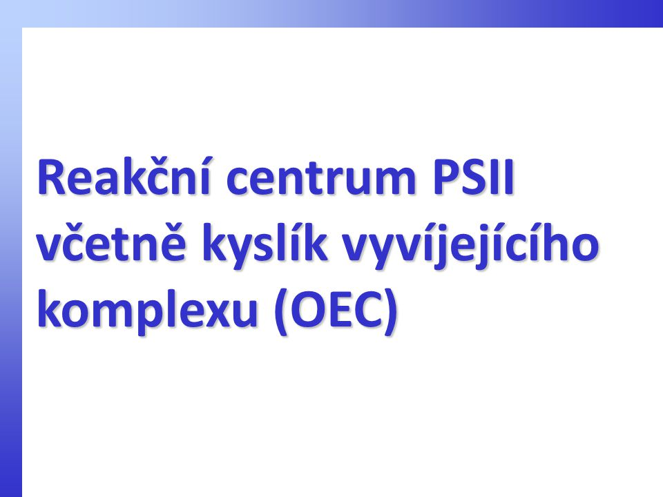 Reakční centrum PSII včetně kyslík vyvíjejícího komplexu (OEC)