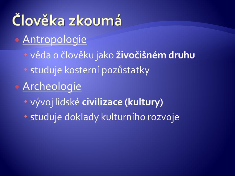 Člověka zkoumá Antropologie Archeologie